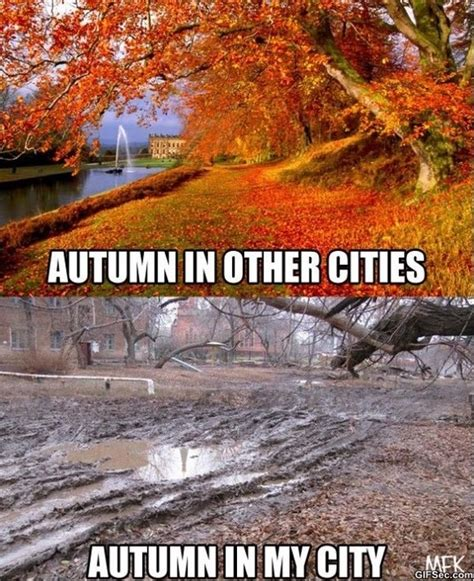 Fall Meme - funny fall quotes autumn quotesgram