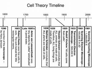 1 1 Introduction To Cells