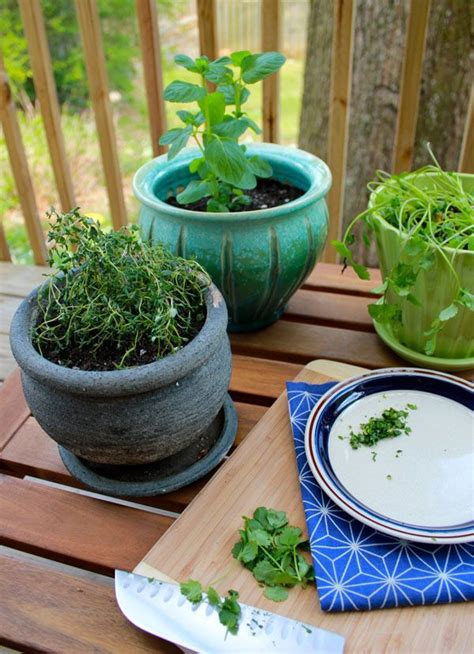 herb container garden diy herb container garden spring dig in deep pinterest