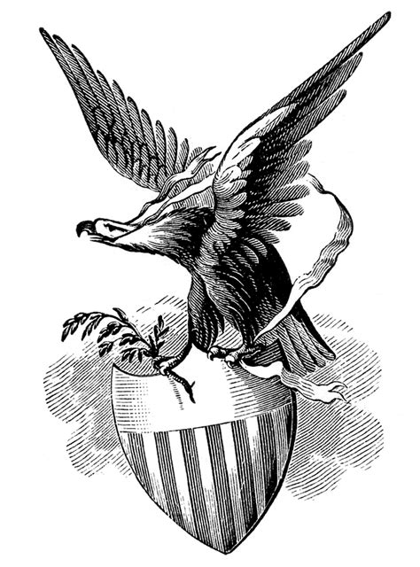 eagle clipart 25 favorite free patriotic images the graphics