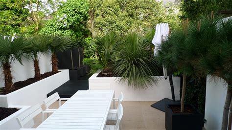 modern garden design brixton garden