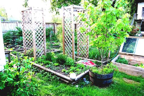 Backyard Vegetable Garden Design Small Kitchen Ideas