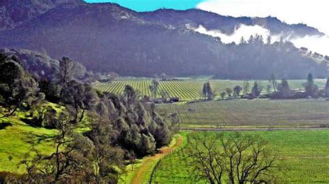 Valley Weather by Napa Valley Day Trip From San Francisc