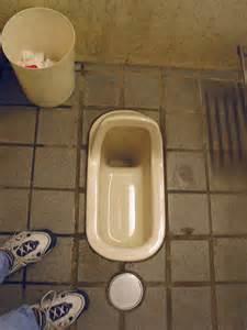 majority  toilets  japanese schools  squat toilets
