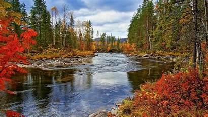 Autumn Scenery Nature Trees River Landscape Fall