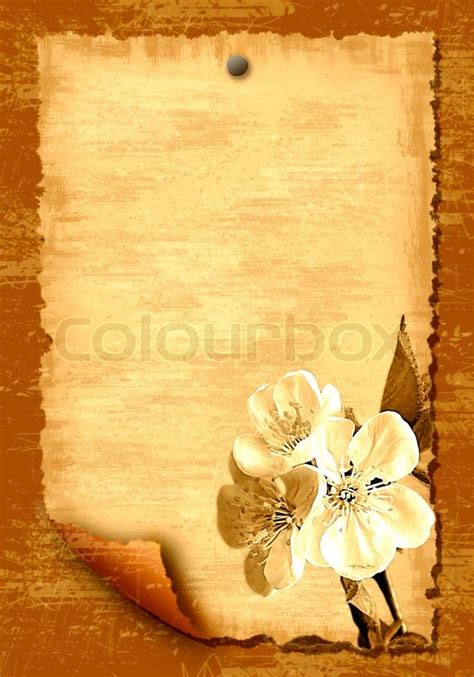 paper blank leaf  flowers stock photo colourbox