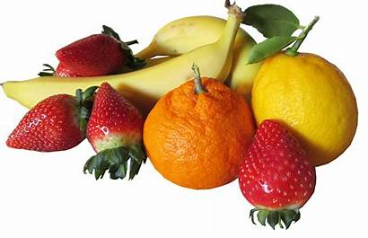 Fruit Fruits Favourite Grow Easy Indoors Month