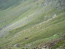 Étage Alpin — Wikipédia