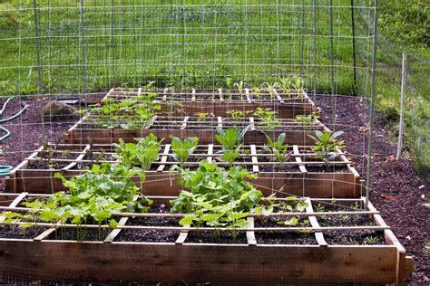 zone hardiness know fall vegetable popsugar gardening tips