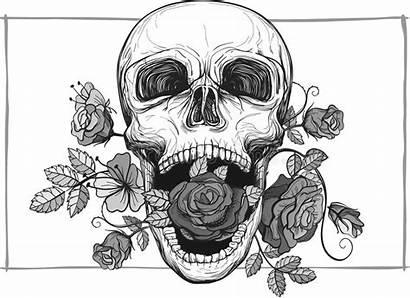 Skull Screaming Vector Roses Rose Flowers Illustration