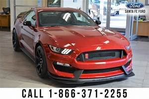 Used 2020 Ford Mustang Shelby GT350R Coupe RWD for Sale (with Photos) - CarGurus