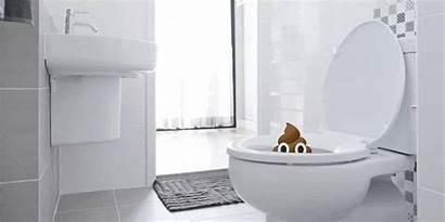 Toilet Close Seat Please Flush Lid Down