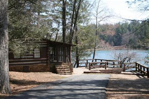 Picture Of Vogel State Park