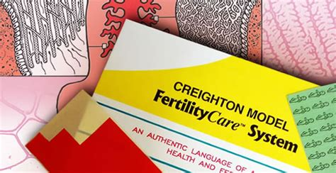 Image result for CREIGHTON MODEL FERTILITYCARE
