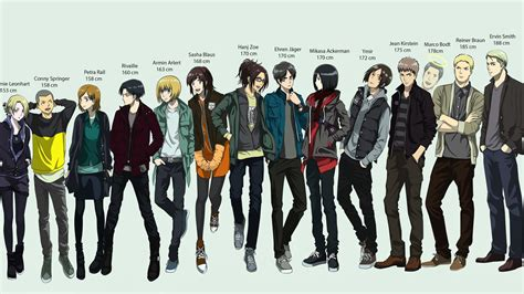 Attack On Titan Characters Height Chart Wallpaper Anime
