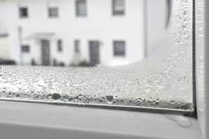 Feuchtigkeit Am Fenster : schimmel am fenster so entfernen sie den schimmel dauerhaft ~ Watch28wear.com Haus und Dekorationen
