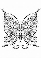 Butterfly Coloring Butterflies Pages Adult Adults Patterns Printable Simple Zentangle Colouring Books Mandala Insect Easy Drawing Justcolor Issuu Supercoloring Coloriage sketch template