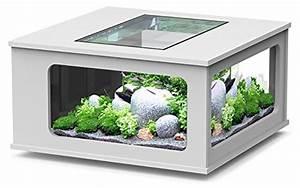 Table Basse 100x100 : table basse aquarium led blanc 100x100 cm ~ Teatrodelosmanantiales.com Idées de Décoration