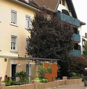 Wohnungen Bad Säckingen : 1 2 millionen euro mit immobilien bad s ckingen badische zeitung ~ Eleganceandgraceweddings.com Haus und Dekorationen