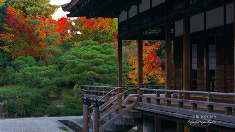 仁和寺宸殿と紅葉の壁紙 1920x1080
