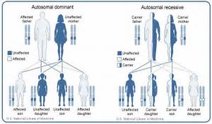 pattern of Ehlers-Danlos syndrome varies by type. The arthrochalasia ... Ehlers-Danlos syndrome, arthrochalasia type