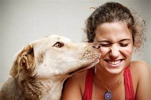 Dogs are able to 'smell' low blood sugar
