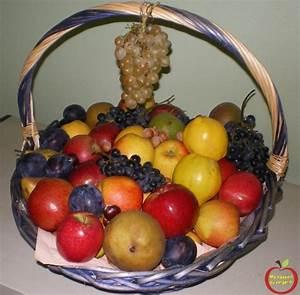 Panier A Fruit : ma passion du verger faire des beaux fruits ~ Teatrodelosmanantiales.com Idées de Décoration