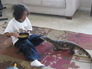 pet water monitor | Water Monitors are amongst some of the ...