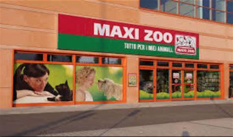 maxi zoo siege social maxi zoo sceglie connexia per gestire digital e social in