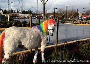 Real life Rainbow Dash pony standing under a real life ...