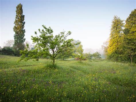 englands great dixter garden design