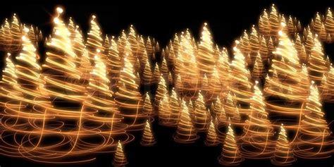 christmas forest   color lights   dark