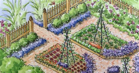 kitchen gardens design potager kitchen garden design plans family food garden 1762