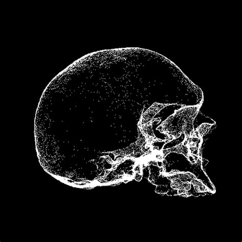 great skull animated gifs   animations