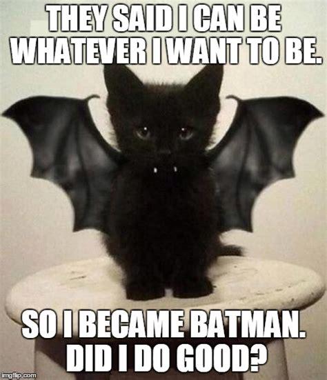 Bat Memes - 12 hilarious bat memes