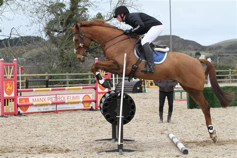 saddle rider jumping comfort tall puissance elite callum prince very saddles event