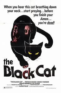The Black Cat (1934) | Horror Movie Posters | Pinterest