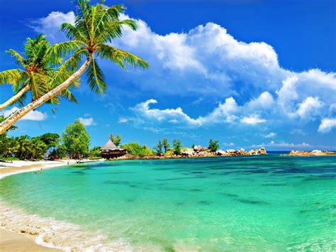 tropical beach bungalow palm sandy beach ocean turquoise