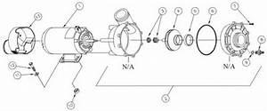 Wavemaster 4000 Wiring Diagram