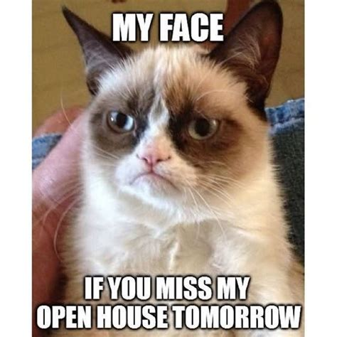 Open House Meme - 50 most funny cat meme pictures and images