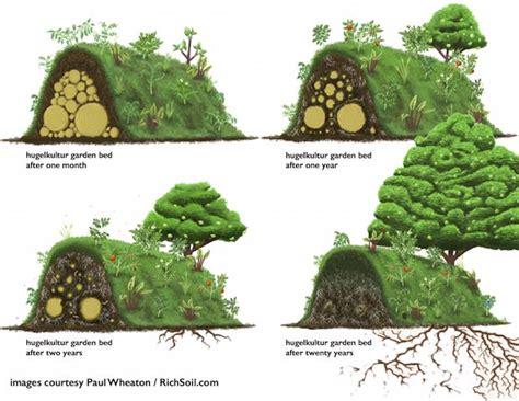 hugelkultur raised beds hugelkultur raised bed garden home garden make