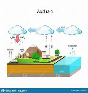Acid Rain  Water Cycle Stock Vector  Illustration Of