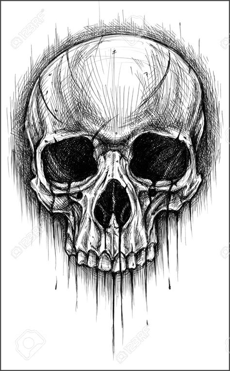 skull drawing google search counter culture