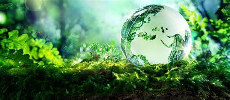 environmental bureau ugc to varsities environment studies course compulsory