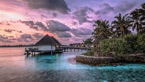 Exotic Wallpapers, Exotic Wallpapers HFY