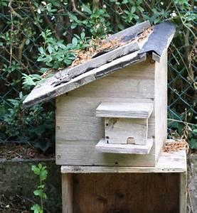 Tiere Im Insektenhotel : alternativen zum insektenhotel garten wissen ~ Whattoseeinmadrid.com Haus und Dekorationen