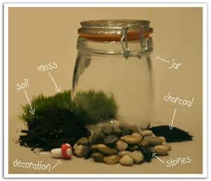 what you need for a terrarium what you need for a moss terrarium terraria pinterest terraria moss terrarium and
