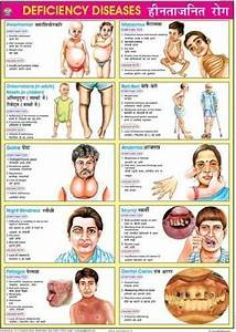 A Good Diet Chart Heart Circulatory System Deficiency Diseases Chart