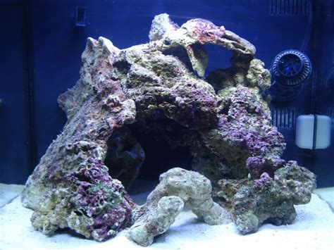 Aquascape Live Rock by 17 Best Images About Aquascaping On Aquarium