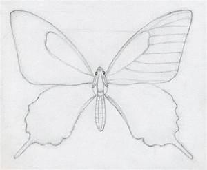 easy drawing | Drawing Pics